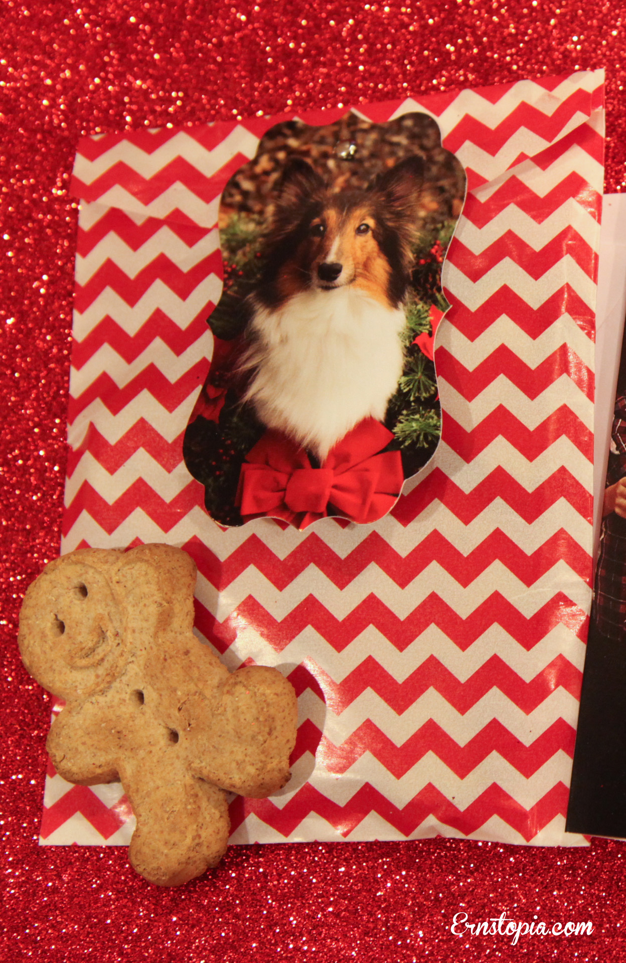 ginger gift 12-25-9014 copy