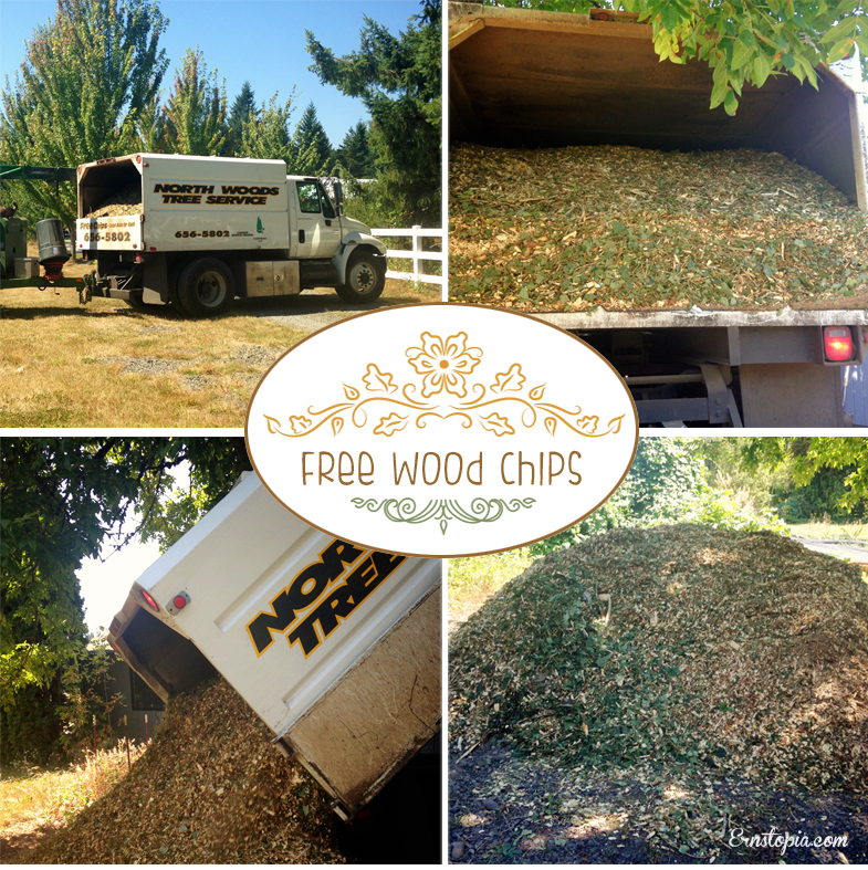 Free wood chips for your garden paths
