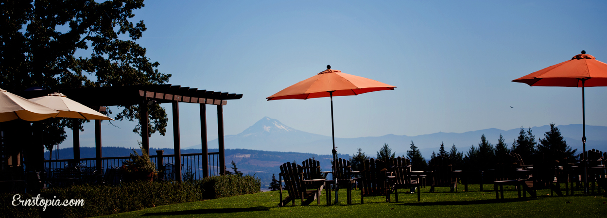 Durant Vineyard's view of Mt Hood