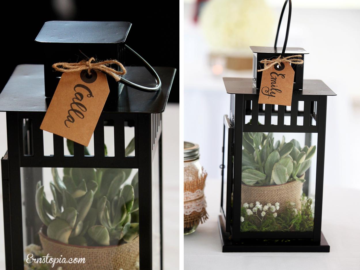 Succulent lantern centerpiece