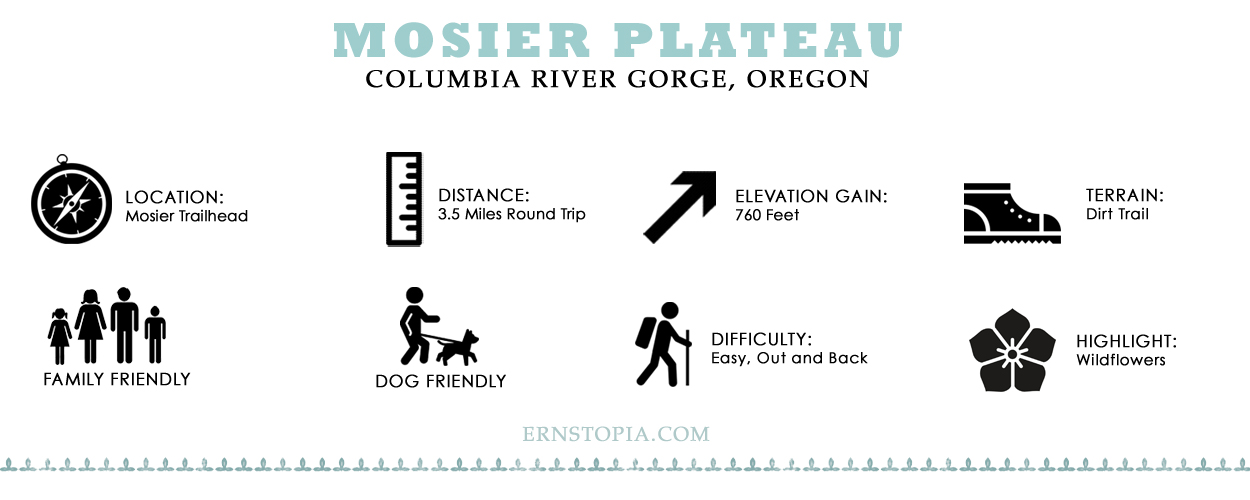 Mosier Plateau HIKING guide