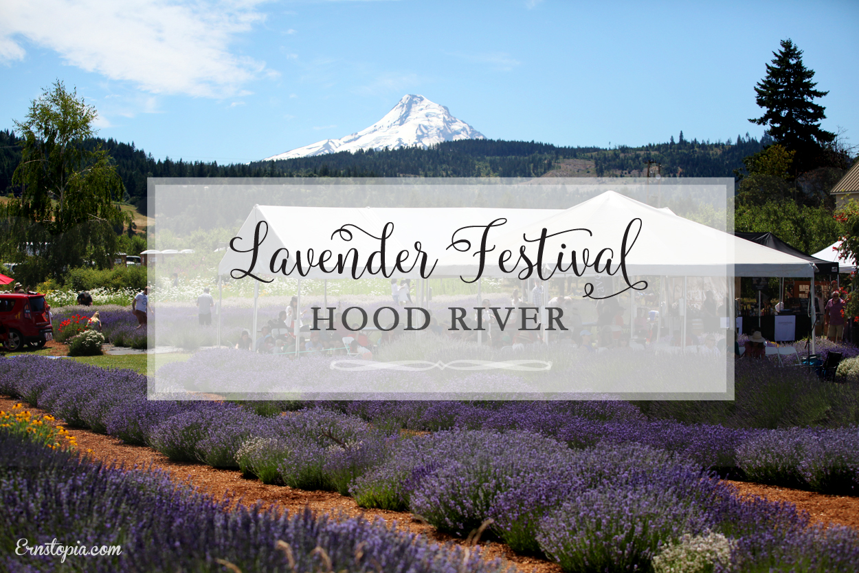 Lavender Daze in Hood River
